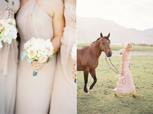 pinkandhorse