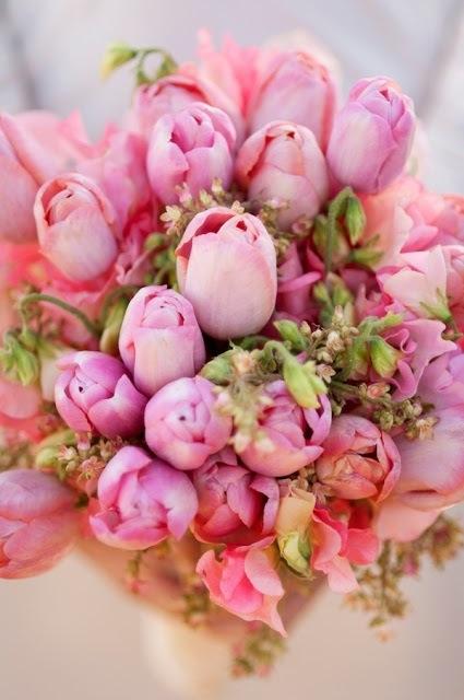 Pinktulips
